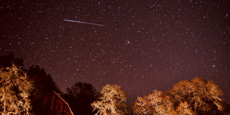 Lyrid Meteor Shower - Alyssa Newcomb
