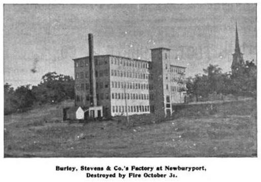 Burley - BS941107